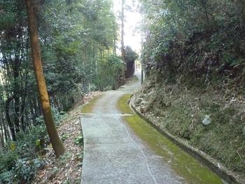 P1210595舗装農道.JPG