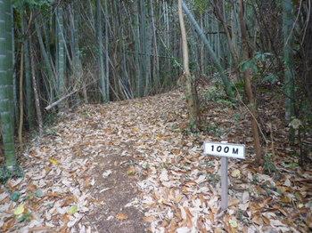 P1210640 100m表示・竹林.JPG