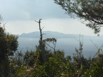 P1210705山頂から大見山.JPG