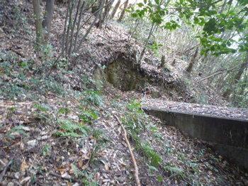 P1210748堰堤左端を下る.JPG