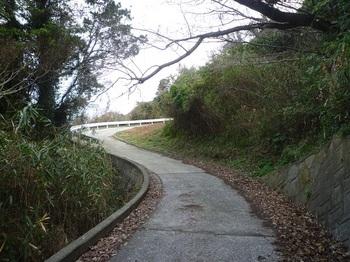 P1210826賀茂神社へ上がる道.JPG