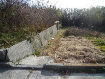 P1210853堤防へ向かう地道.JPG