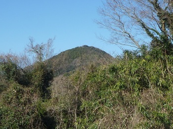 P1210909金蔵山山頂方向.JPG