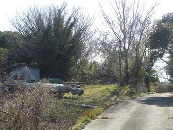 P1210910作業小屋・舗装農道.JPG