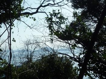P1210915樹間わずかに情島.JPG
