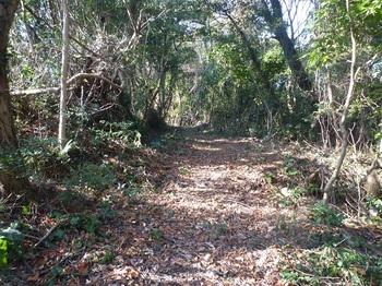 P1210967山頂方向の登山道.JPG