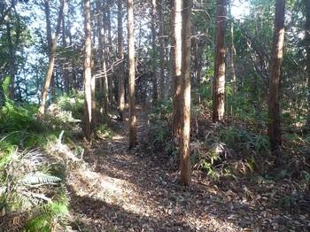 P1220014墓地への山道.JPG