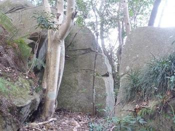 P1220083岩.JPG