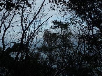 P1220084岩上から樹間展望(手島).JPG
