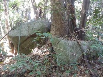 P1220119岩.JPG