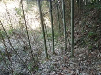 P1220146山道.JPG