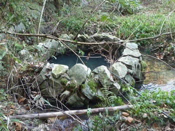 P1220147石垣の水槽?.JPG