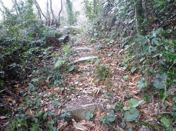 P1220260山道の石段.JPG