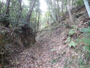 P1220261掘割り状の山道.JPG