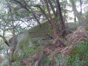 P1220297左へ巻いた方向の大岩.JPG