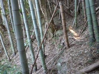 P1220466山道分岐.JPG
