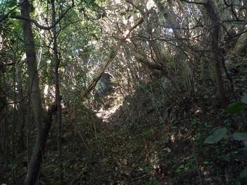 P1220467山道.JPG