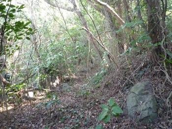 P1220990山道.JPG