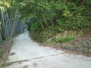 P1230139山道分岐(右).JPG