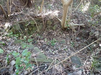 P1230188桝状の石積み.JPG