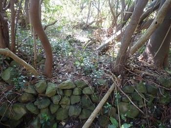 P1230197石垣状の石積み.JPG