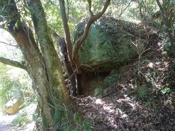 P1230219岩.JPG