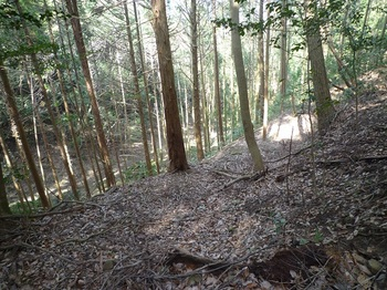 P1230384北側(七見側)の谷.JPG