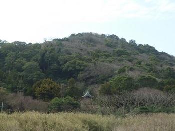 P1230479神社・裏山.JPG