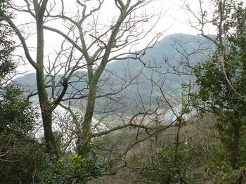 P1230494樹間の砂洲.JPG