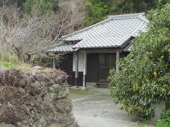 P1230506神社.JPG