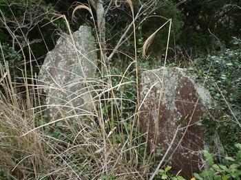 P1230546二つ並んだ石.JPG