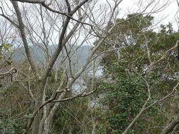 P1230547樹間に津尾山.JPG