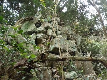 P1230552西側の石垣.JPG