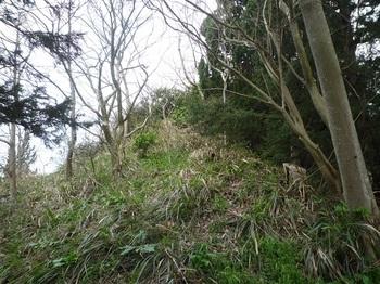 P1230575鞍部から山頂方向.JPG
