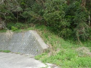 P1230589下降口のコンクリート擁壁(逆方向).JPG