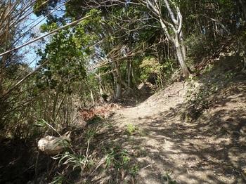 P1230615山道.JPG