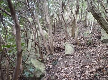 P1230626左に小岩.JPG