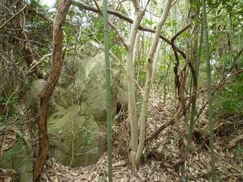 P1230632山頂部の小岩.JPG