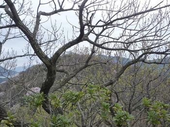 P1230658遠見山・上盛山.JPG