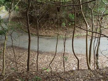 P1230690舗装林道終点.JPG