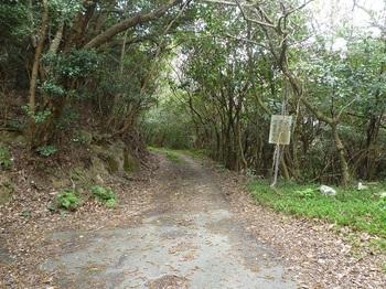 P1230692林道が先に延びる.JPG