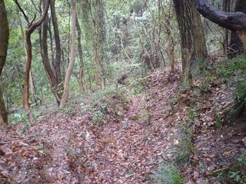 P1230775左の谷からの古道と出会う.JPG
