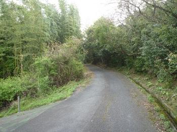 P1230951舗装林道へ出る.JPG