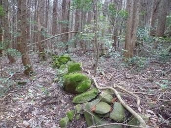P1230968低い石垣.JPG