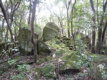P1240035角岩の小ピーク(490m).JPG