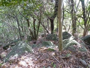 P1240194小岩が散在.JPG