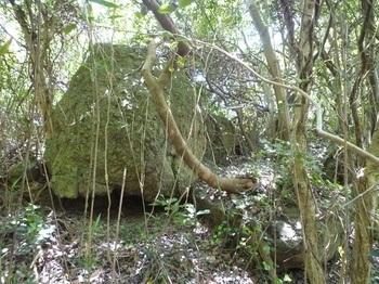 P1240312集塊岩.JPG