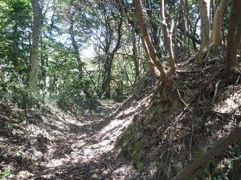 P1240320鞍部の山道(右方向).JPG