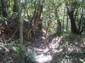 P1240322掘割り状の山道.JPG