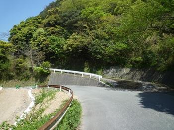 P1240374林道(右)分岐.JPG